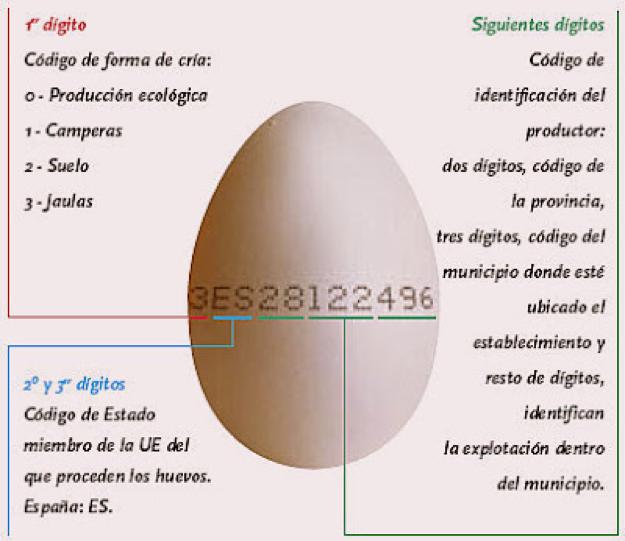 marcado huevo 1